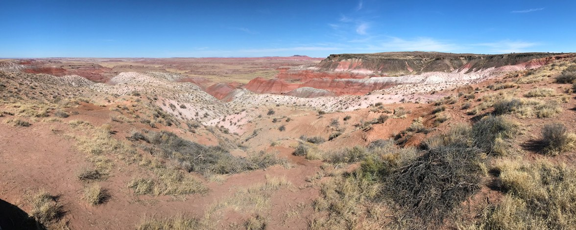 Petrified Forest National Park Whipple Point Scenic Overlook