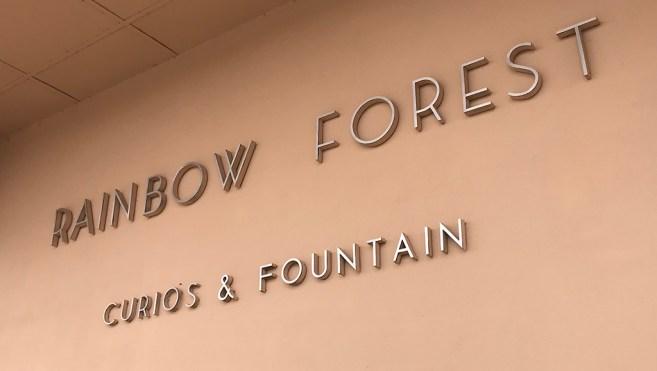 Rainbow Forest Curios and Fountain