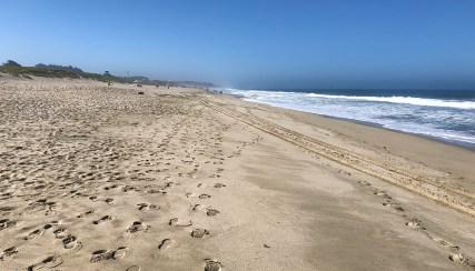 Francis State Beach in Half Moon Bay