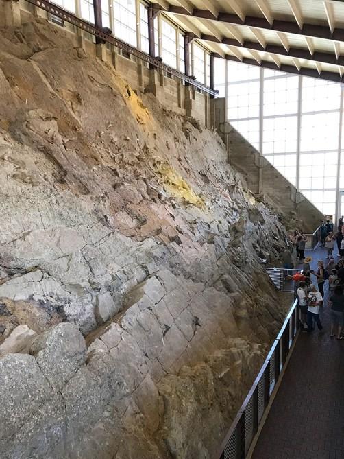Dinosaur National Monument Wall Of Dinosaur Bones