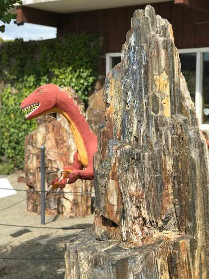 Dinosaurs and Petrified Wood at the Ginko Gem Shop