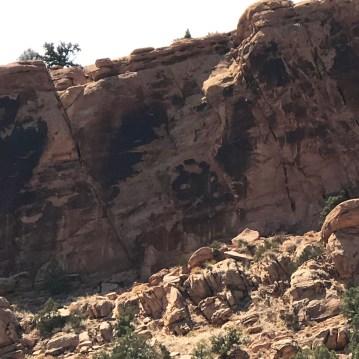 Giant Lizard Petroglyph In Dinosaur National Monument