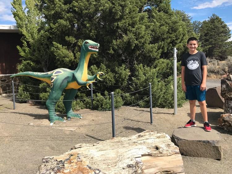 Carter Bourn With A Ginko Gem Shop Dinosaur