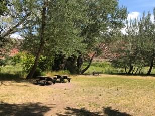 Picnic Area Near Josie Morris' Cabin at Dinosaur National Monument