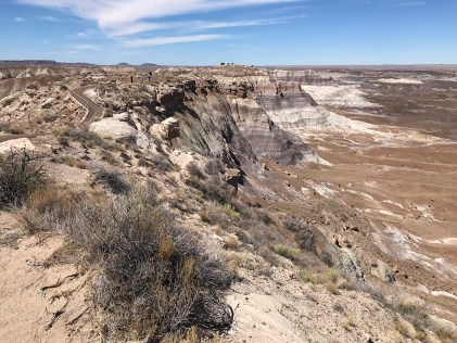 The Start Of The Blue Mesa Trail