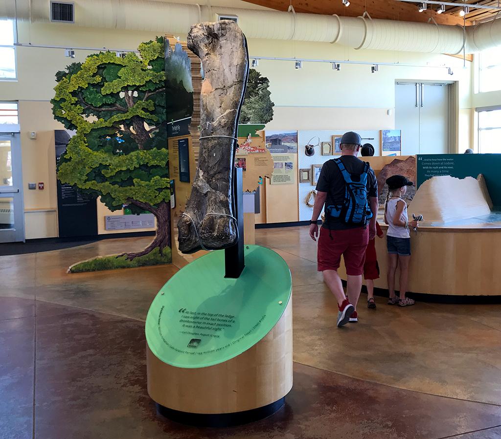Visitor Center Exhibits at Dinosaur National Park
