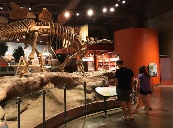 Walking through the Utah Field Natural History State Park Museum