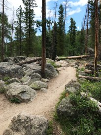 The Adams Falls Trail Near Grand Lake, Colorado