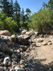 Alluvial Fan Trail from the East Parking Area