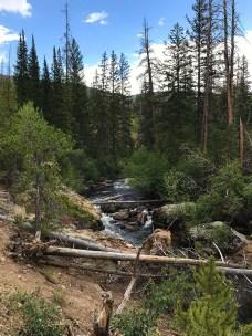 East Inlet Creek