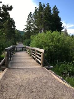 Sprague Lake Nature Trail Bridge