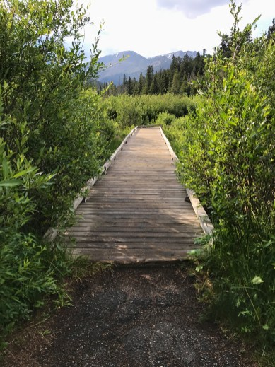 Beaver Ponds Boardwalk