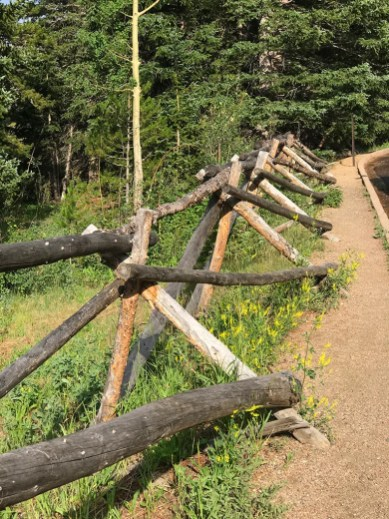 Wooden Fencing along Trail Ridge Road at at the Beaver Ponds Boardwalk Trailhead