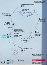 Cactus Forest Loop Drive Map