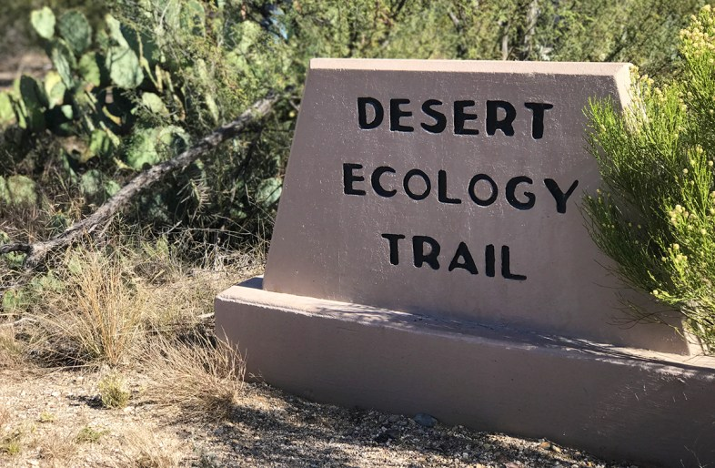 Desert Ecology Trail Sign on Cactus Forest Loop Drive at Saguaro National Park