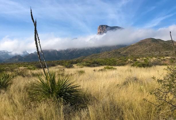 Chisos Basin Road Views