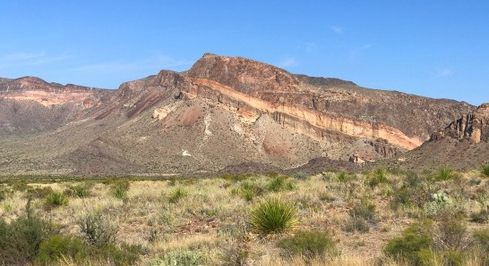 Desert Landscape in Big Bend National Park