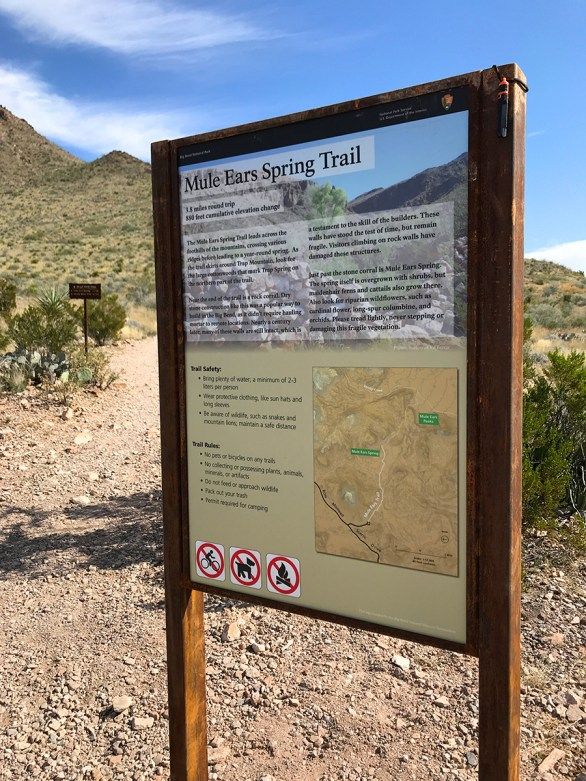 Mule Ears Spring Trail along Ross Maxwell Drive