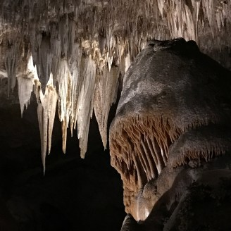 Carlsbad Caverns National Park Rock Formations