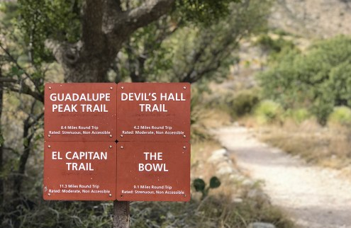 Pine Springs Trailhead Signs at Guadalupe Mountains National Park