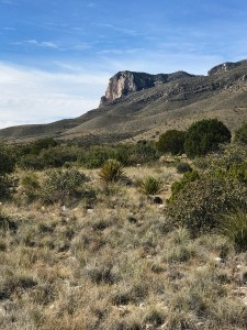 Trail View at Guadalupe Mountains National Park