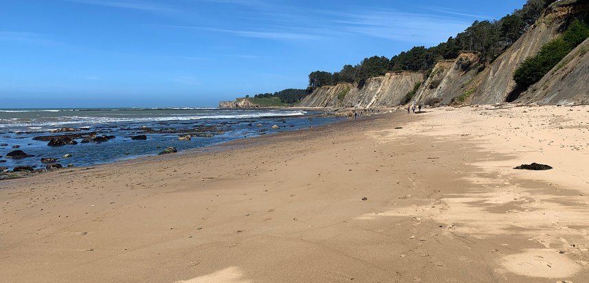 Bowling Ball Beach in Mendocino County