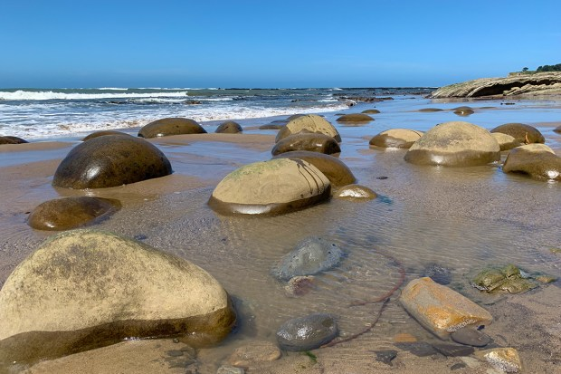 Sandstone Bowling Ball Formations On The Beach