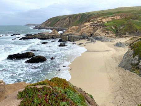 Beach At Bodega Head