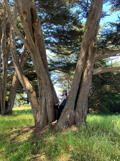 Natalie Bourn in a Cypress Tree
