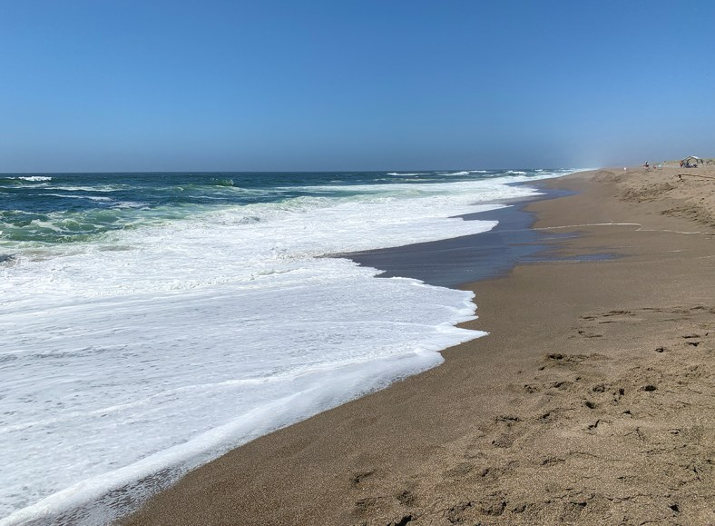 North Beach In Point Reyes