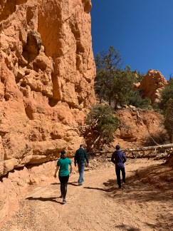 Starting Out On The Arches Trail