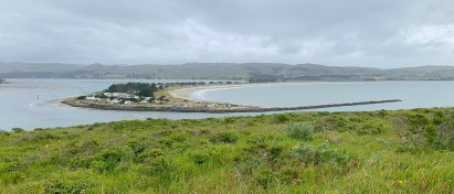 View of Doran Beach Campground From Bodega Head