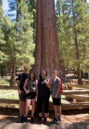 Bourn Family at the General Sherman Tree