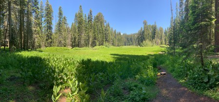 Crescent Meadow at Sequoia National Park