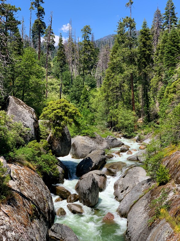 River at Sequoia National Park