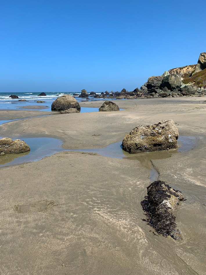 Tidepools at Dillon Beach During Low Tide