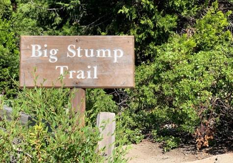 Big Stump Trail Sign