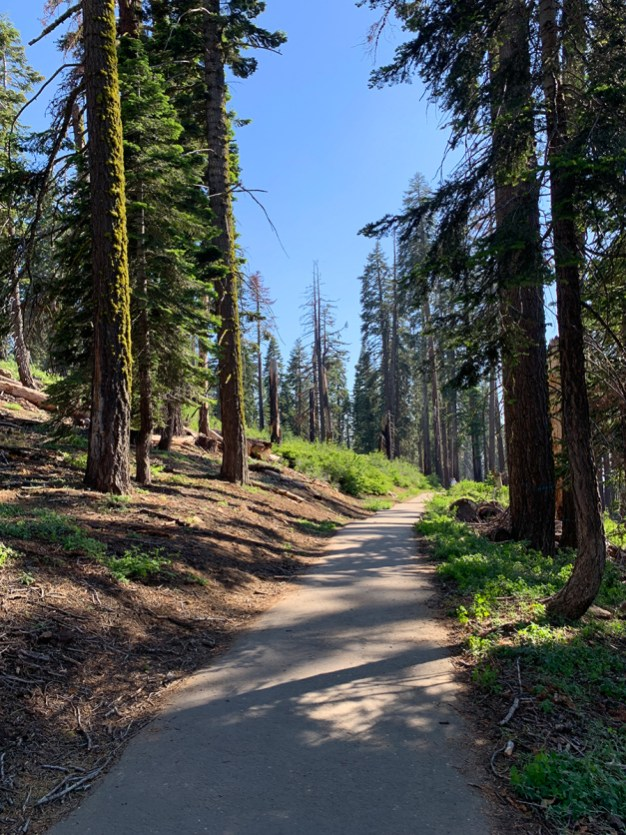 Panoramic Point Trail at Kings Canyon National Park