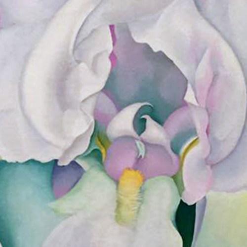 Georgia O'Keeffe Tate Modern Exhibition Flowers