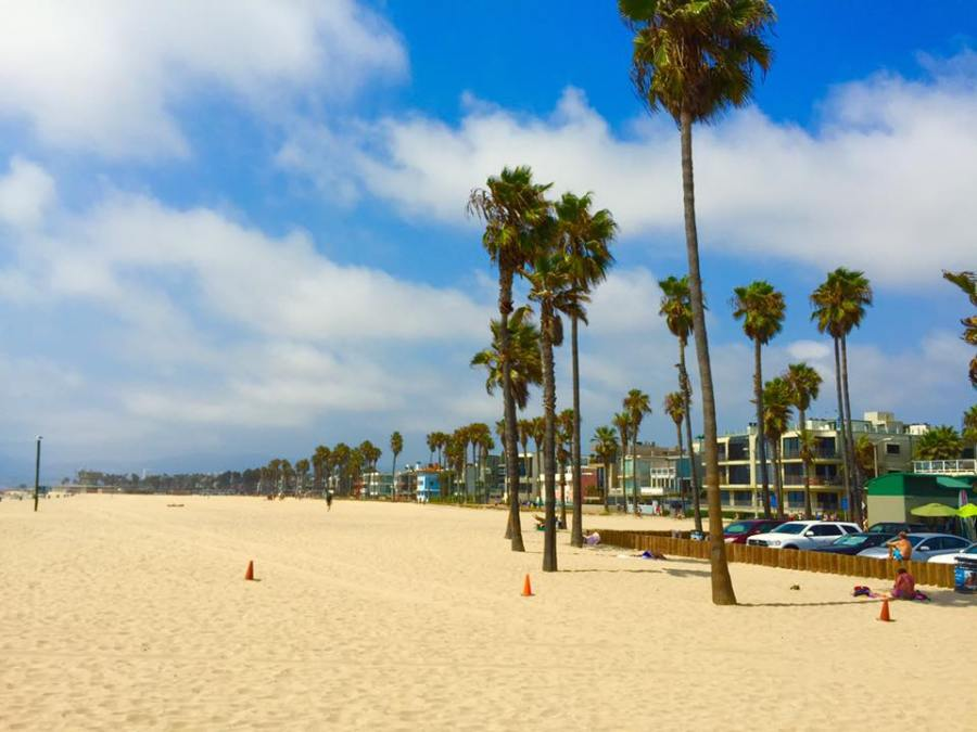 Venice Beach LA United States America Palm Trees Travel Holiday West Coast Road Trip