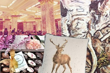 october-favourites-wrendale-designs-zedel-el-toro-steak-restaurant-chocolate-show-datery