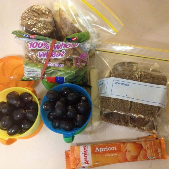A healthy kids' lunch for our trip to the zoo