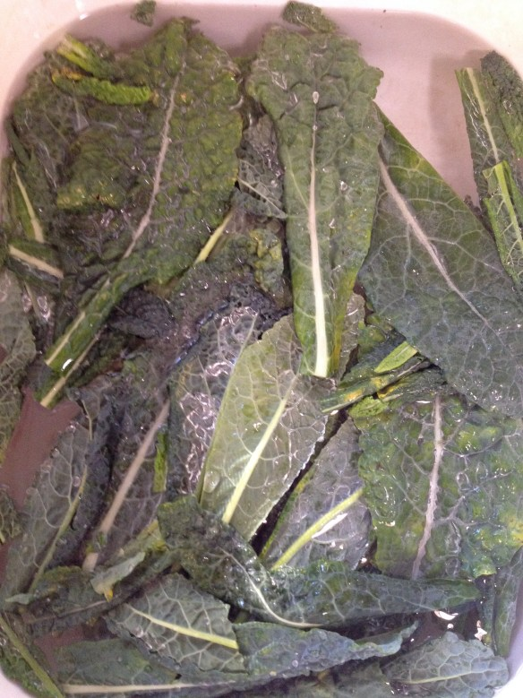 Kale leaves soaking in a salt water soak