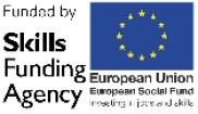 ESF skills funding agency