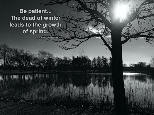Be patient, the dead of winter leads to the growth of spring.