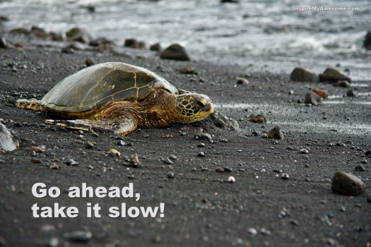 Go ahead, take it slow.