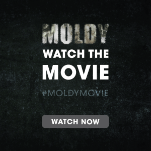 moldy movie on mold toxcity syndrome