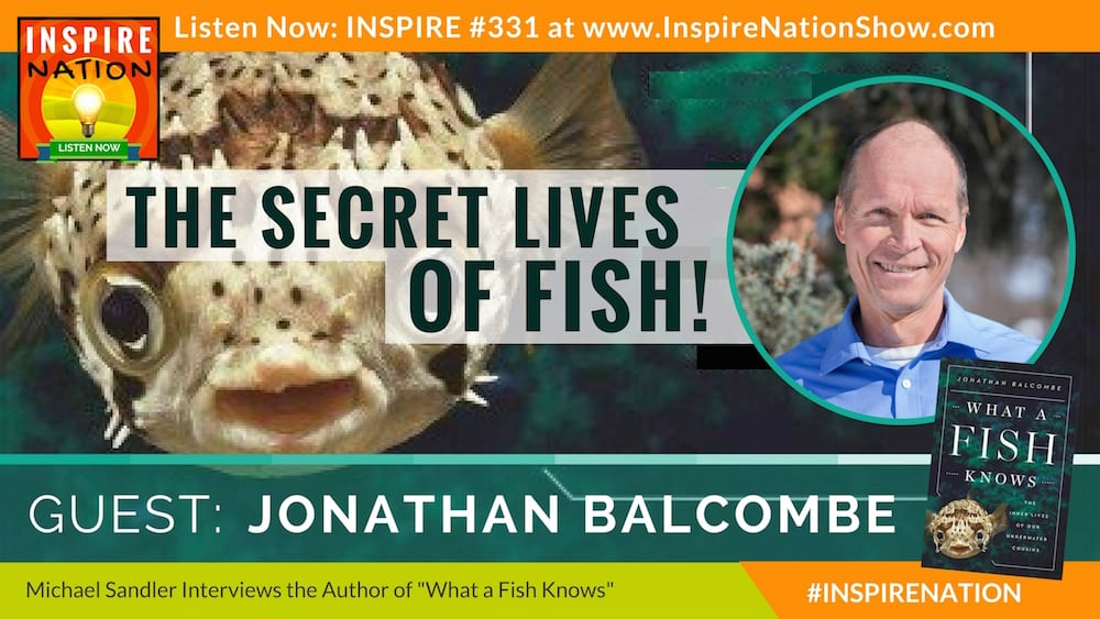 "Listen to Michael Sandler's interview with Jonathan Balcombe on ""What a Fish Knows!"""