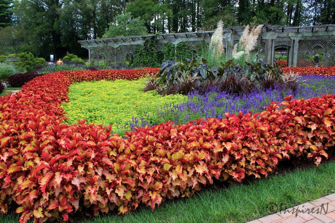 Biltmore Gardens, Asheville - InspiresN