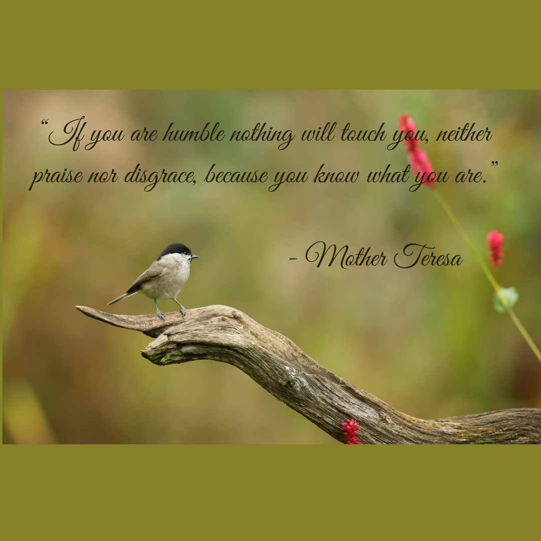Humility And Inspirational Quotes Inspiresn